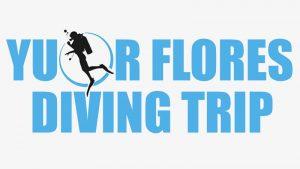 Your Flores Diving Trip